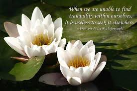 Tranquility Quotes Enchanting Peace Quotes When We Are Unable To Find Tranquility Within
