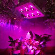 Best Cheap Led Grow Light 2015 Us 671 32 5 Off Populargrow High Power 1200w Cob Full Spectrum Led Grow Light With 90 Degree Refletor Cup For Medical Plants Maximum Yield In Led