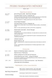 Jefe De Proyectos Web Web Project Manager Resume samples