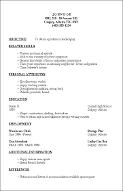 Formats For Resumes Adorable Simple Job R Simple Job Resume Examples Nice Great Resume Examples