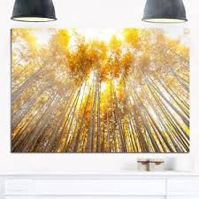 image is loading autumn bamboo grove in yellow oversized forest glossy  on yellow wall art ebay with autumn bamboo grove in yellow oversized forest glossy metal wall