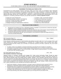 sample resume business technology executive resume template example with professional experience sample business resumes sample executive resume format