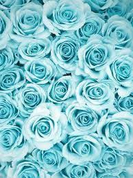 pretty blue tumblr backgrounds. Contemporary Pretty Image Result For Pastel Blue Background Tumblr With Pretty Blue Tumblr Backgrounds Pinterest