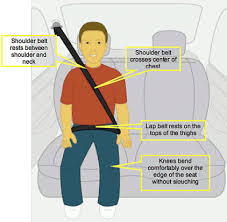 The Car <b>Seat</b> LadyWhy should <b>kids</b> use boosters? Can't they just ...