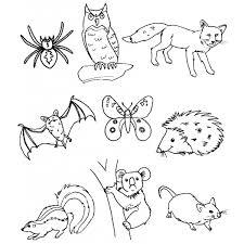 Disegno Di Animali Del Bosco Da Colorare Per Bambini