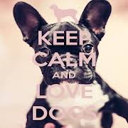 i love dogs wallpaper. Delighful Love Keep Calm Love Dogs Wallpapers For I Wallpaper E