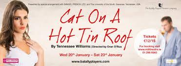 cat on a hot tin roof essay greed essay essay on the help cat on a hot tin roof thesis john splash magazines