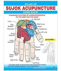Acupressure Points Chart Free Download Stomach Acupuncture