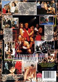 Never Say Never to Rocco Siffredi DVD Evil Angel