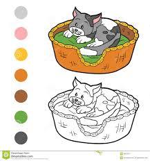 Belle Coloriage Chat Dans Panier