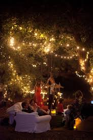 string up globe lights and host a backyard party