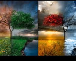 Резултат с изображение за цветове