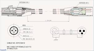fender big apple wiring diagram fresh xlr rca wiring diagram free rh ipphil com xlr to