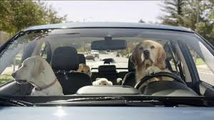 2018 subaru dog commercial. unique commercial with 2018 subaru dog commercial t