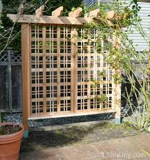 Small Picture Vibrant Idea Garden Trellis Plans Impressive Design PDF Arbor