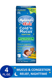 Hyland S 4kids Cold N Cough Nighttime Dosage Chart Kids Cold And Mucus Liquid Night Time Congestion Relief For Children By Hylands 4kids 4 Ounce Packaging May Vary