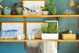 11 best indoor herb garden kits 2021