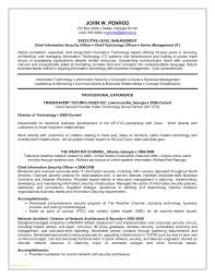 Security Guard Resume Format With Resume Security Clearance Example