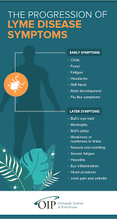 what is lyme disease how can it cause