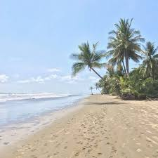 Marino Ballena National Park Uvita 2019 All You Need To