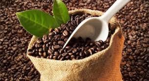 Kết quả hình ảnh cho tiêu thụ cà phê 2016