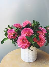 these vases highlight flowers best when the blooms have some volume to them here i used a full bunch of mint and then added in some dahlias with the