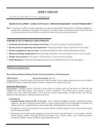 Resume For Sales Representative Adorable Marketing Representative Resume Sales Representative Resume Example