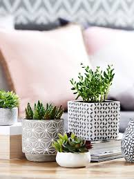 Concrete Planters For Your Home