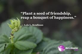 Friendship Quotes And Sayings With Nature Photographs Quotes Gallery