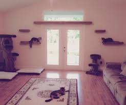 wall mounted cat furniture. Large-size Of Brilliant Cat Wall Shelves Then Trees Customer Shelf In Mounted Furniture