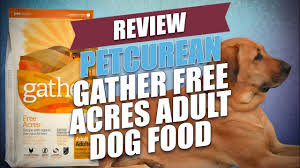 Petcurean <b>Gather Free Acres</b> Adult <b>Dog</b> Food Review - YouTube