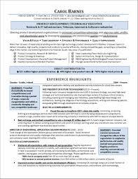 Alluring Resume Marketing Executive India With Additional Resume