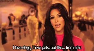 Kim Kardashian Quotes Impressive Kim Kardashian Funny Moments On TV Twitter Quotes