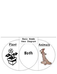 Venn Diagram Plants Basic Needs Of Plants Animals Venn Diagram Tab Book By Pop Science