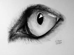 Cool Animal Eye Drawings With Makeup Pinterest Draw Tumblr