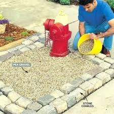 the family handyman tip of day keep dog from ruining your yard urine discolors and
