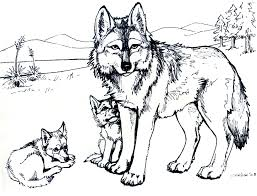 The wolf coloring sheets showcases wolves in their natural habitats as well as along with their offspring. Free Printable Wolf Coloring Pages For Kids
