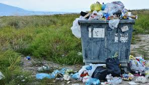 Image result for Litter Pacifica, Ca picture