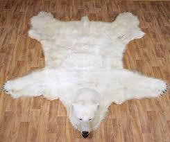 large polar bear skin rug