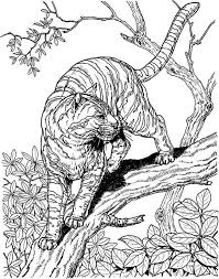 Small Picture 35 best Coloring Pages School Tours images on Pinterest Coloring