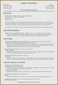 30 New Examples Of Resumes For College Students With No Work