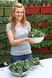 i grow in a vertical garden