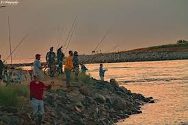 Cape Cod Canal Fishing Archives My Fishing Cape Cod