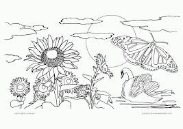 Nature Coloring Pages Printable Google Search Birthdays