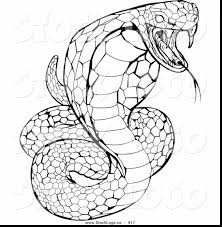 Small Picture extraordinary king cobra snake drawings with snake coloring page