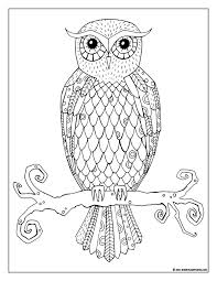 Coloring Pages Gallery Short Leg Studio