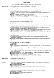 Senior Strategic Account Executive Resume Samples Velvet Jobs