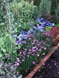 Herb Garden Types Of Plants For Herb Gardens Choosing Herbs For Gardens Hgtv
