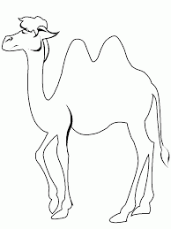 Small Picture Coloring Pages Camels Animated Images Gifs Pictures