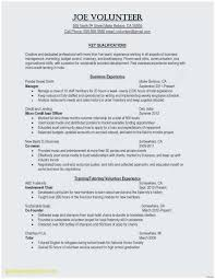 Police Volunteer Sample Resume